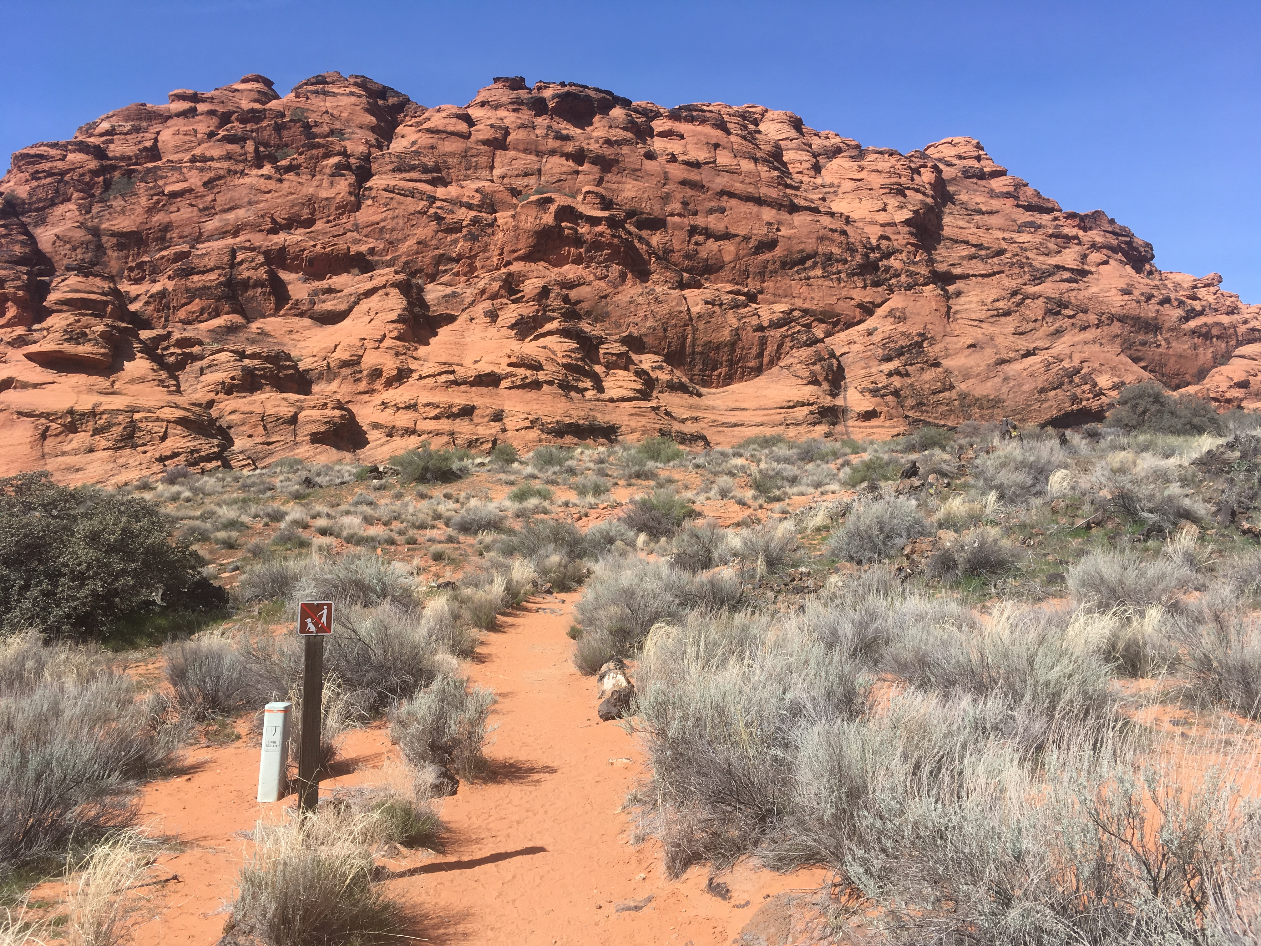 Snow Canyon in Three Hikes | Zion Area Info  |Snow Canyon State Park Utah
